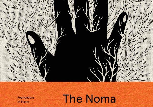 ביקורת ספר: The Noma guide to Fermentaion   מדריך מסעדת נומה להתססה